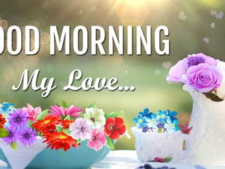 Good morning saying with images of flowers hd download