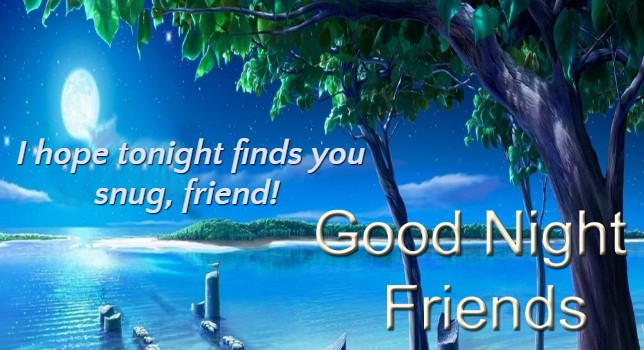 cute good night messages for friend