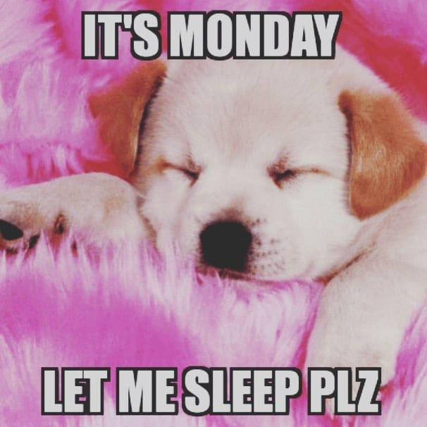 cute morning monday pictures for facebook