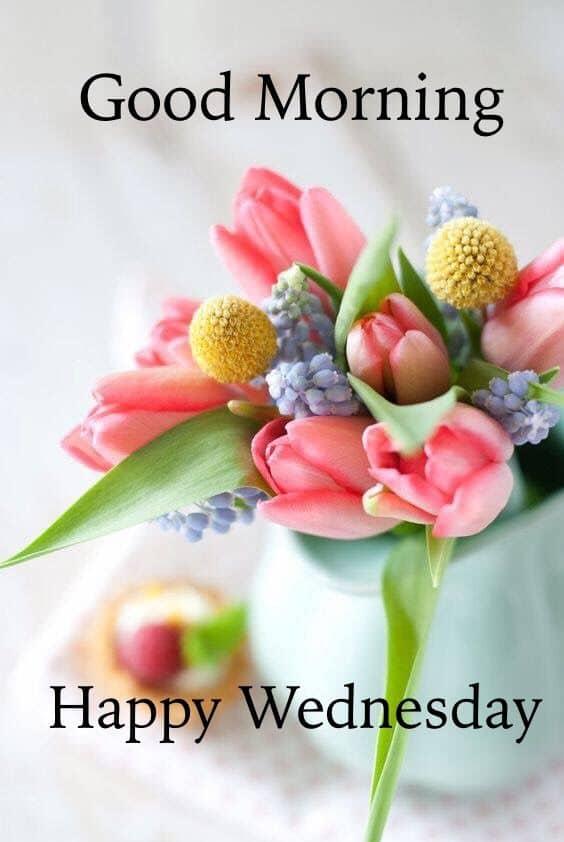 happy wednesday photos for whatsapp