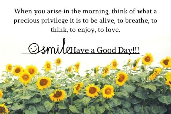 Good Morning Images With Positive Quotes