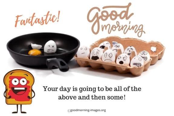 funny good morning amazing images